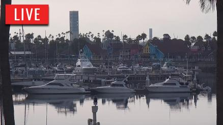 Long Beach Harbor Live