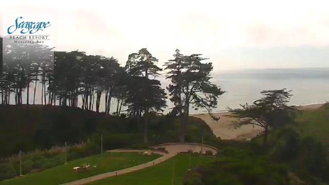 https://portal.hdontap.com/snapshot/seascape_ttv-DMS?overlay=yes&position=ul&size=640x360&overlay_image=upload_469c1cebd9b713dbb9d1583d12ce490f.png&padx=5&pady=5
